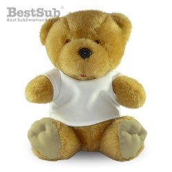 Teddy bear with T-shirt...